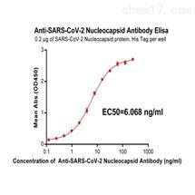 DME100015Anti-SARS-CoV-2 Nucleocapsid antibody(DM22), Rabbi