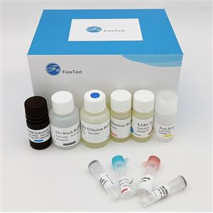 Human ANTXR1 ELISA试剂盒