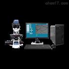 GL003全自动纤维细度仪