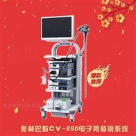 290系列胃腸鏡奧林巴斯電子消化內鏡