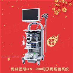 290系列胃肠镜奥林巴斯电子消化内镜