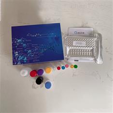 小鼠石胆酸ELISA试剂盒