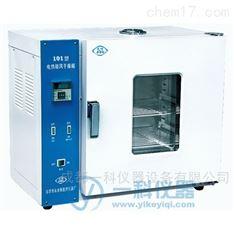 電熱鼓風干燥箱--北京永光明