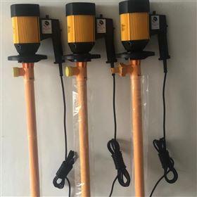 HD-E2-V+PVDF-1000无极调速插桶泵