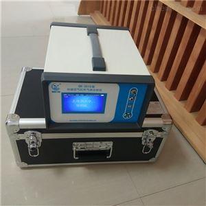 便携式红外CO测定仪 国瑞力恒 GR2015