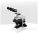 BHP光学偏光显微镜