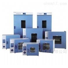 上海一恒大型烘箱DHG-9920A,1000L