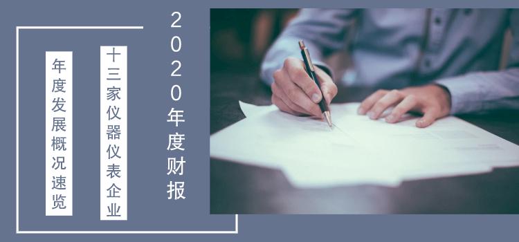 十三家上市仪表企业2020年度财报发布,业绩哪家强?