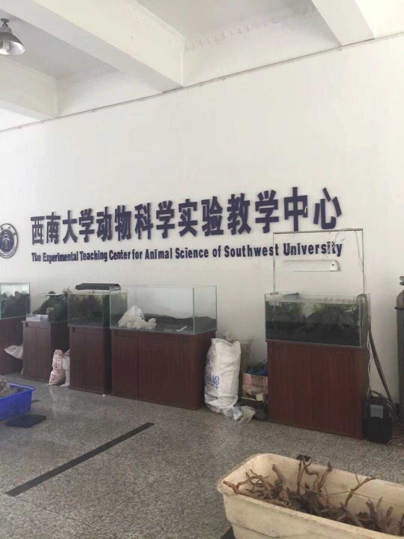 西南大学动物科学学院选用华创实验超纯水机!