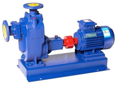 100ZW100-30自吸泵