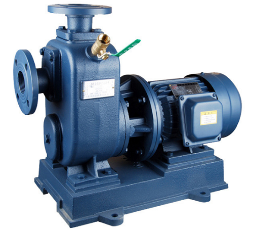 100ZWL100-30直联式自吸泵
