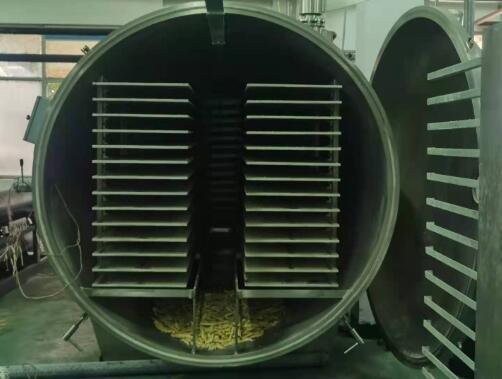食品真空冷冻干燥机