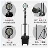 DD7500B35W大面积抢修强光氙气泛光工作灯生产厂家