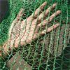 蔬菜大棚用遮阳网河北供应报价,遮阳网分类方式