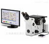 GX53铸铁金相显微镜