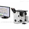 GX53金相组织观察分析显微镜
